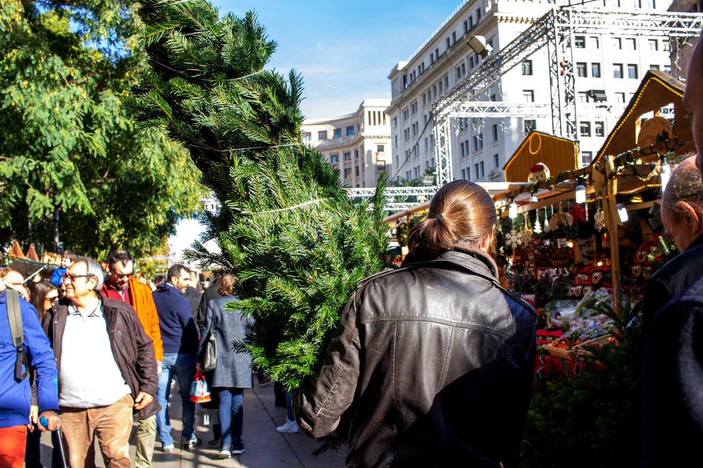 Man carrying tree in Barcelona Christmas Markets