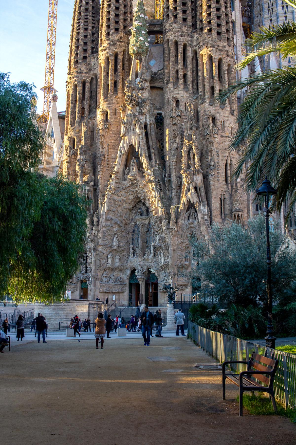 The Sagrada Familia from the park.